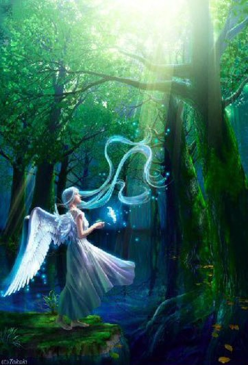 angel-in-forest-light