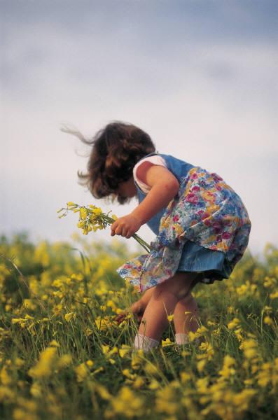 little-girl-picking-dandelions