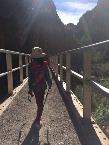 经过这座桥,就要到幻影农庄了