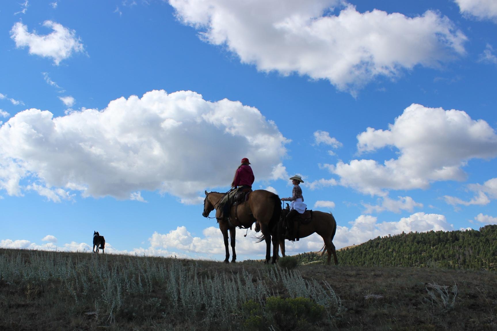 riding (6)