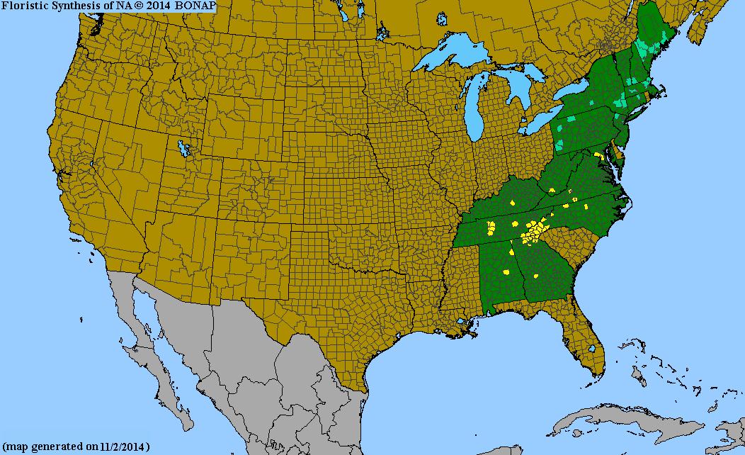 https://i2.wp.com/bonap.net/MapGallery/County/Thermopsis%20villosa.png