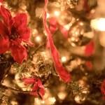 コストコのクリスマスグッズ2016まとめ!ツリーやケーキについても!