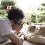 ねこあつめの家(映画)のキャストやあらすじ・公開日は?出演の猫も!