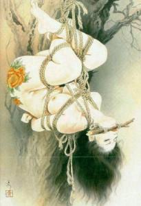 картинка по запросу Shotsuma Yoko