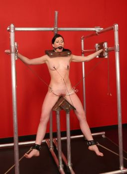 Awesome Brunette Slave in Stocks Gets Dominated Hard in the Dungeon