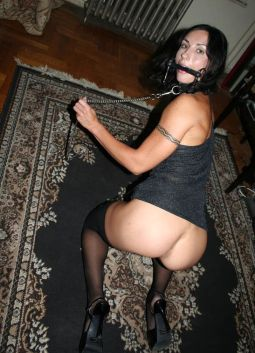 Hot Brunette Slave Gets Stripped, Bit Gagged and Collared for Training