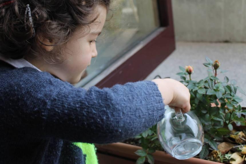 Montessori: Educação para a Paz