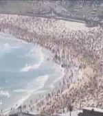 Shark-scares-swimmers-out-of-water-on-Bondi-Beach-in-Australia