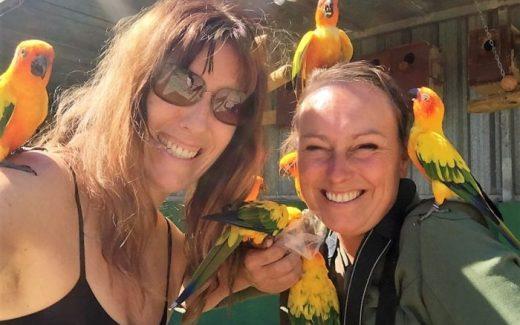 Jardin del Papagayo | Vogeldierentuin Benicarlo