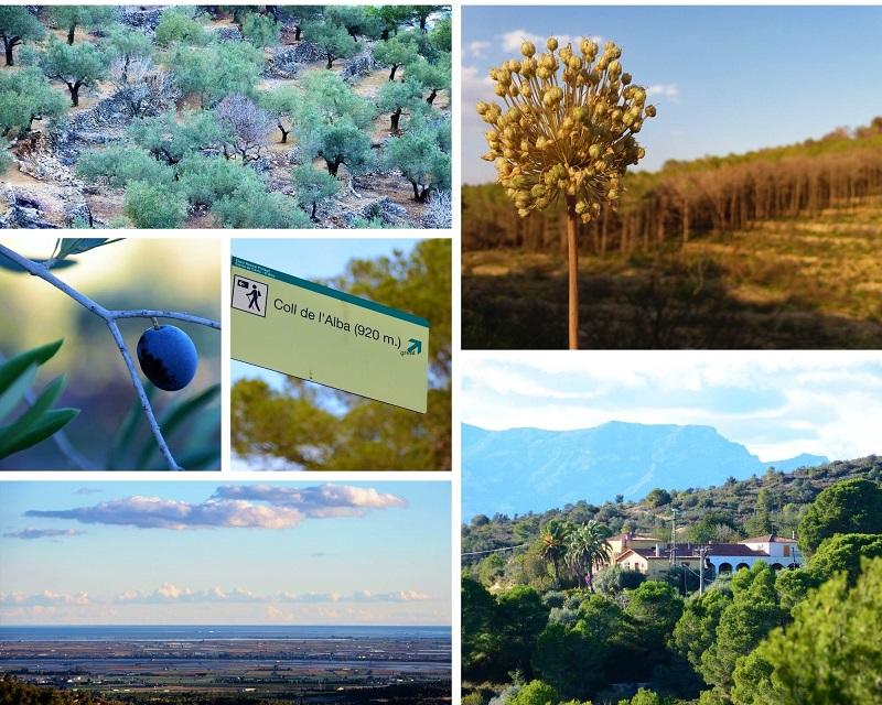 Coll de Alba natuurgebied Tortosa