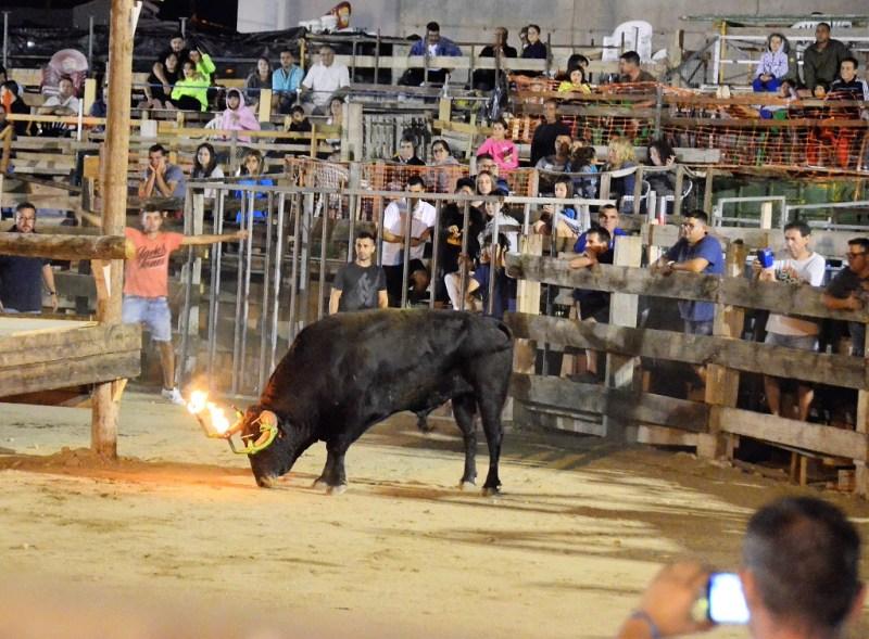 Stom in Spanje | Top 10 Spaanse ergenissen