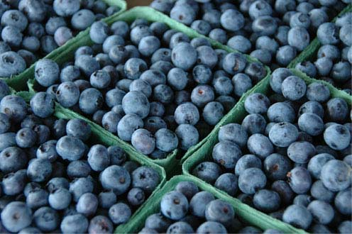 image_blueberries