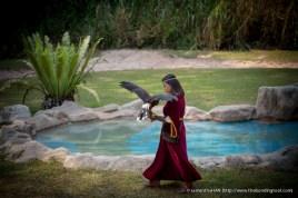 Jurong Bird Park-0088