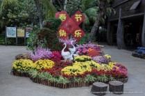 Jurong Bird Park-9894