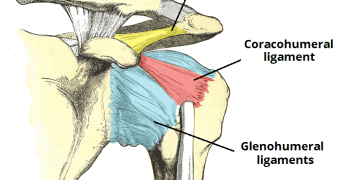 Shoulder Pain Causes, Diagnosis and Treatment