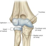 Elbow Instability Causes and Treatment