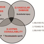 Thromboprophylaxis in Orthopedic Surgeries