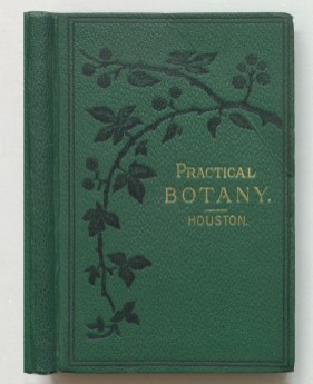 Practical botany for elementary students, 1882