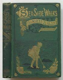Sea-side walks of a naturalist, 1870
