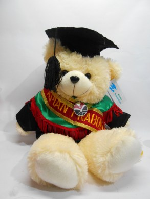 boneka wisuda beruang teddy bear 50cm bordir di selempang wisuda 3