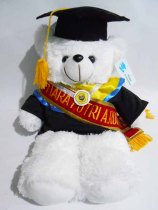 boneka wisuda beruang teddy bear 50cm bordir di selempang wisuda