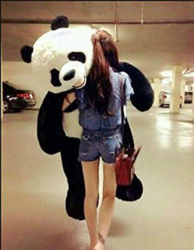 Jual Boneka Kartun Boneka Teddy Bear Beruang Panda