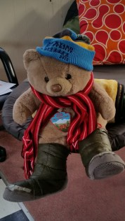 Mr Bear keeps us under wraps