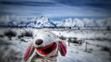 Lammy's 5th visit to the Tetons