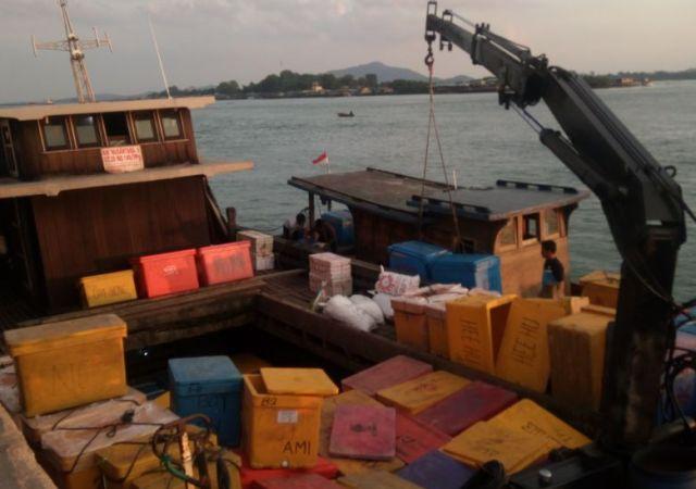 Dugaan Perdagangan Hasil Laut Menyeruak di Pelabuhan Sagulung