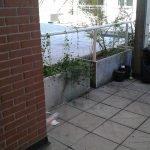 Questo è invece uno scorcio del terrazzo principale...