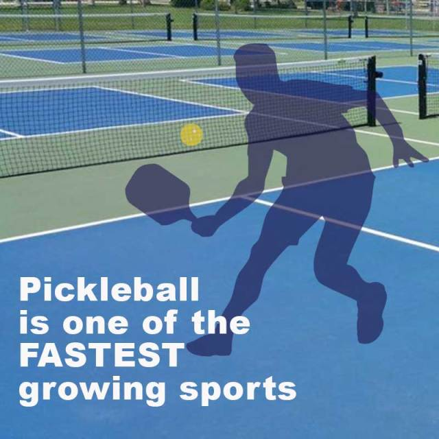 Pickleball popularity growing in Southwest Florida