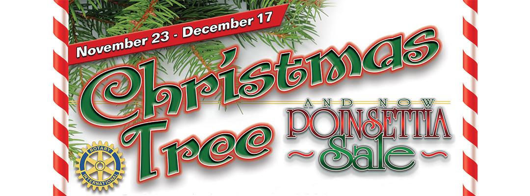 Christmas Tree & Poinsettia Sale 2019