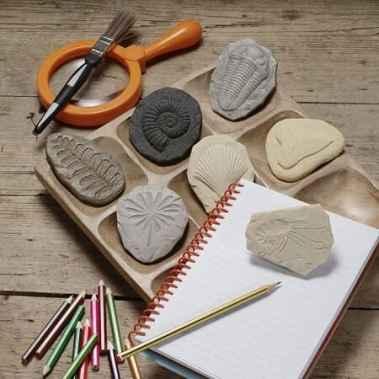 jeu-montessori-investigation-fossiles