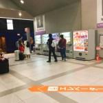 【徒然なるままに】32日間の旅を終えて日本に帰って来ました。さて・・・・