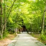 妊娠中も遠出がしたい!東京からサクッと1時間、軽井沢日帰り温泉旅行