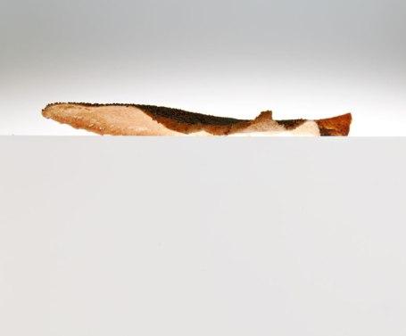 Fruen's Delicacies, for Hotel Randers, 2009