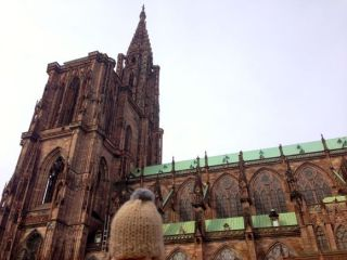 globe-t-bonnet-voyageur-travelling-winter-hat-strasbourg-cathedraleB