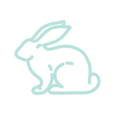 rabbit-400