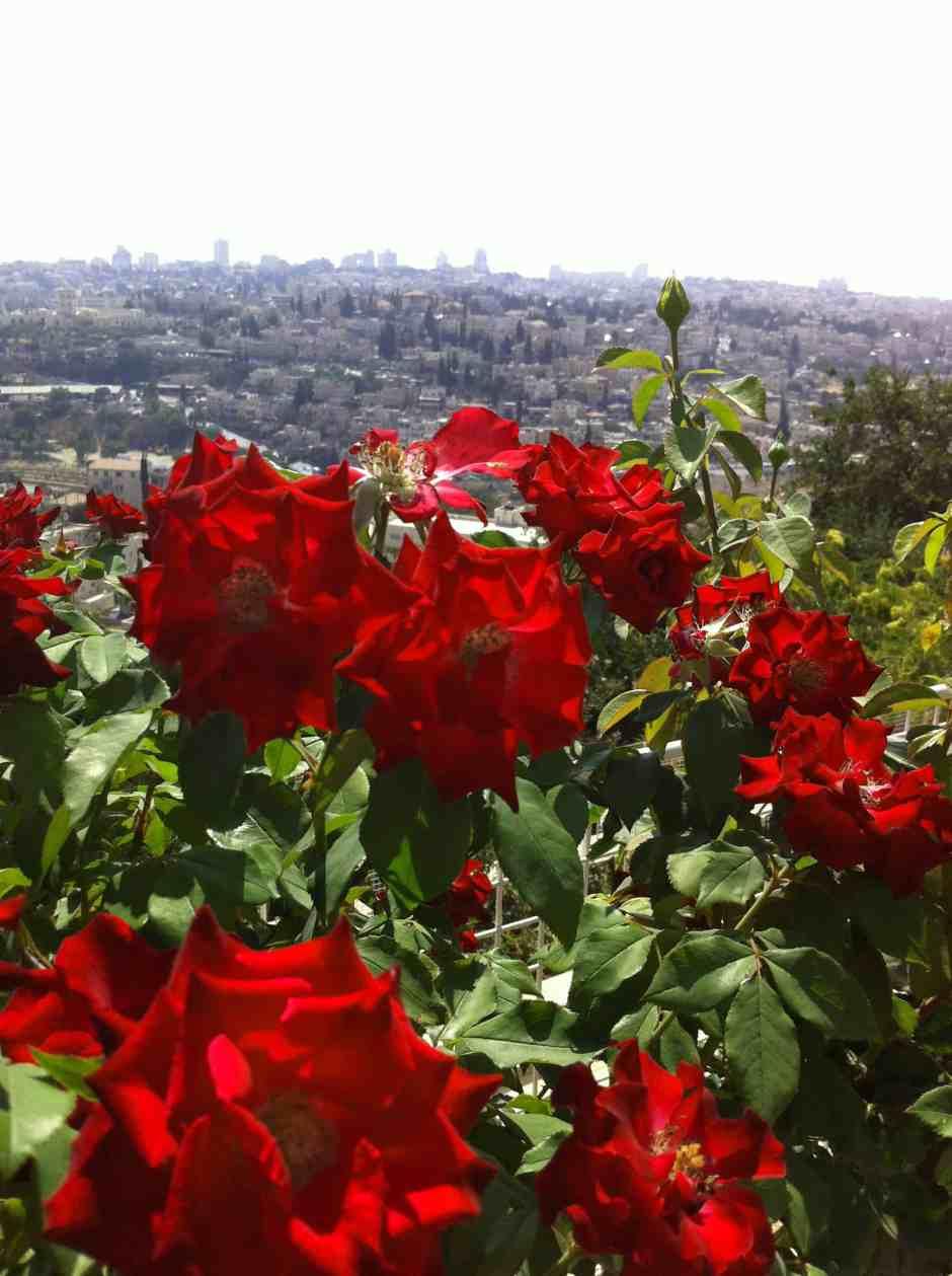 jerusalem-hill