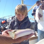 Stingray survey, youth education