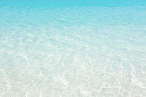 Sea background Bonnie Lass charters tours