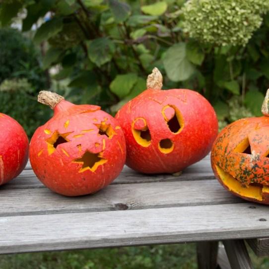Basteltipp für die Herbstferien