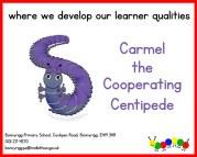 CooperatingB-26o5co6