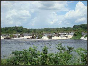 2010 Venezuela 59