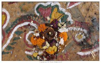 Bilder der Rajasthanreise 474