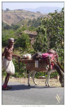 Indien_0257