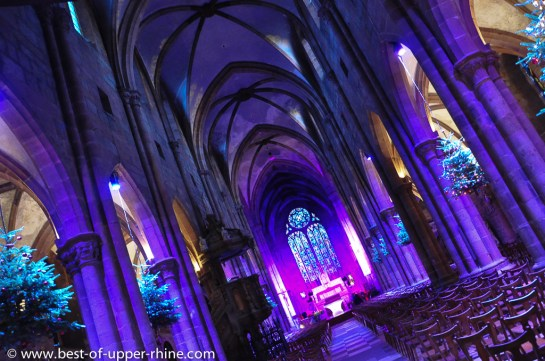 Noel 2012 Selestat. Sapins décorés dans l'église St-Georges