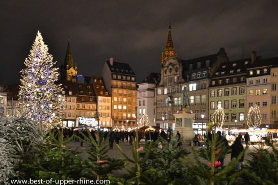 Sapin de Noël géant sur la Place Kléber à Strasbourg