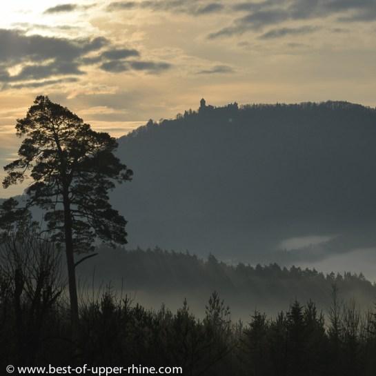 Le château du Haut-Koenigsbourg vu du village de La Vancelle