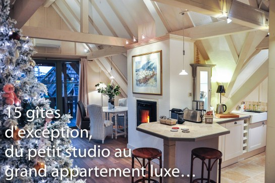 La Cigogne Blanche, grand appartement luxe pour 2 personnes sur les remparts de Riquewihr.